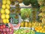 Экскурсионные туры в РИО де жанейро