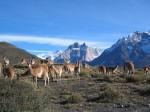 Туры в Чили и Перу