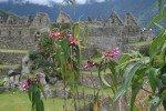 Почему такие дорогие путевки в Перу?